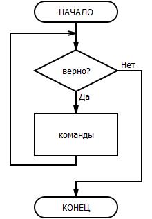 блок-схема цикла пока